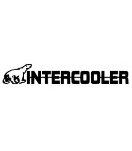 x2 Sticker INTERCOOLER